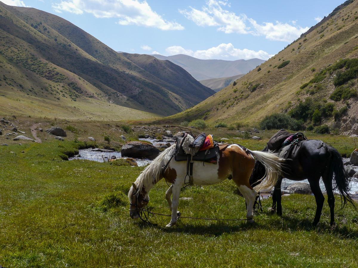 20120828-kirgistan_song-kol_reiten_P1040776