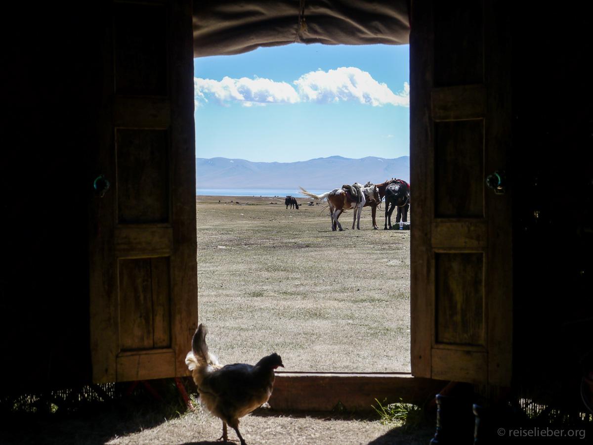 20120829-kirgistan_song-kol_reiten_P1040889