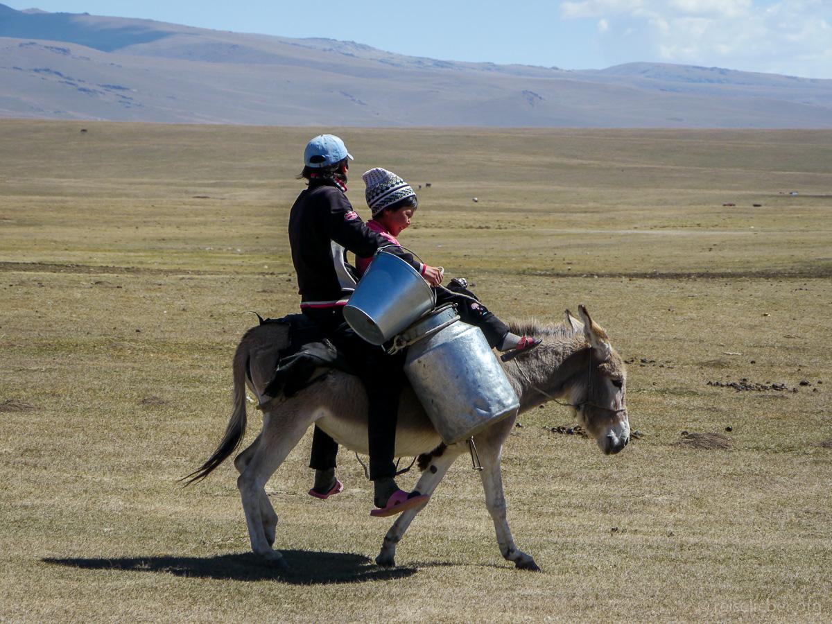 20120830-kirgistan_song-kol_reiten_P1040953