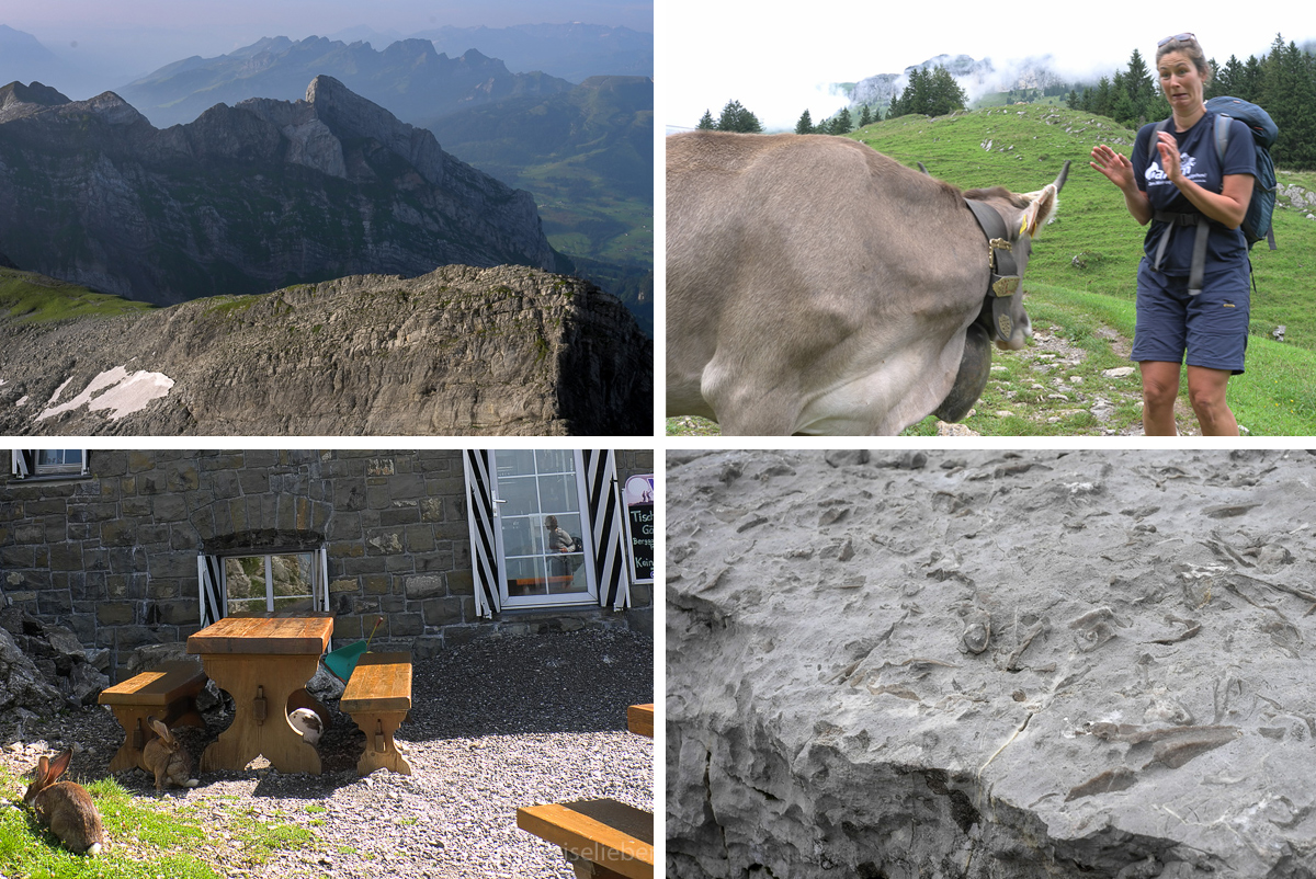 1408_alpstein_collage_4