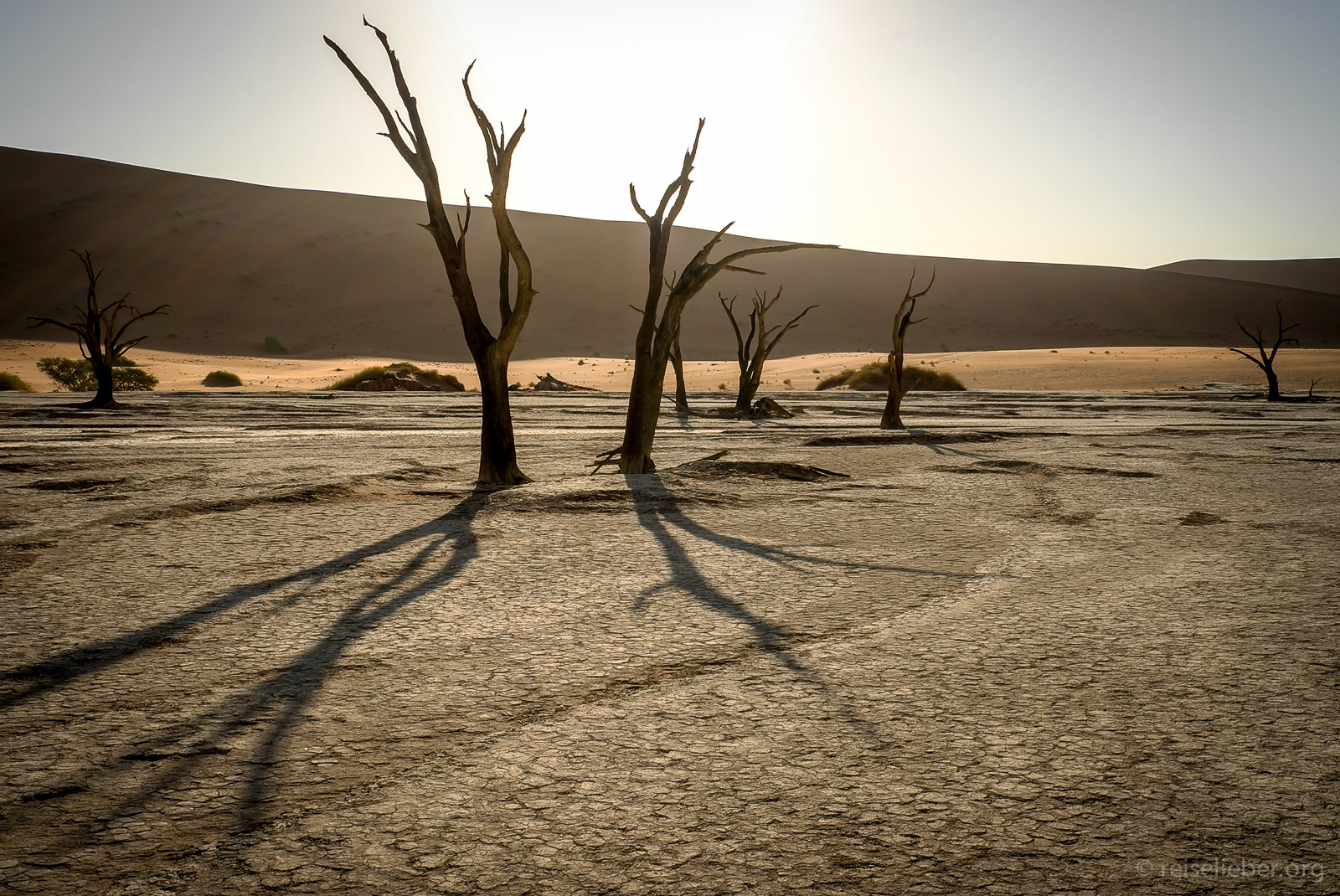 20141025_Namibia_Roadtrio_Chronik_L1121799