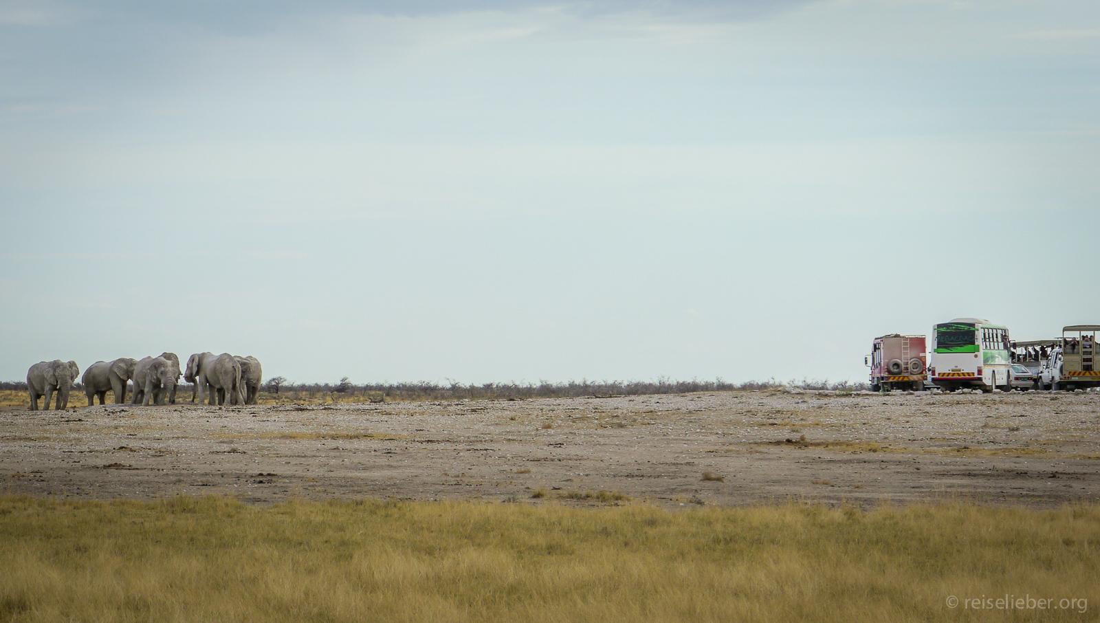 20141108_Namibia_Roadtrio_Chronik_P1130345