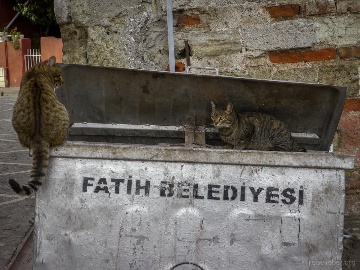 20150120_tuerkei-istanbul-balat_P1130544