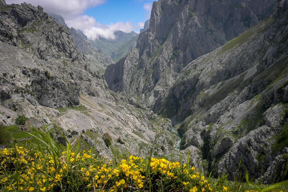 20150517-picos-de-europa_L1125295