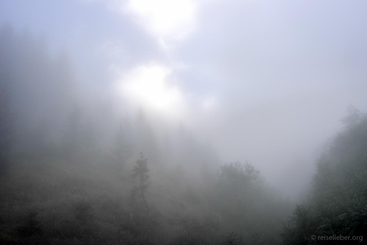 Nebelige Morgenstimmung