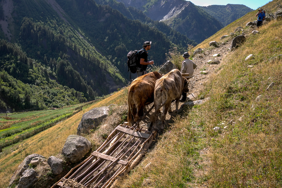 20150916_georgien-swanetien-trekking_L1171193