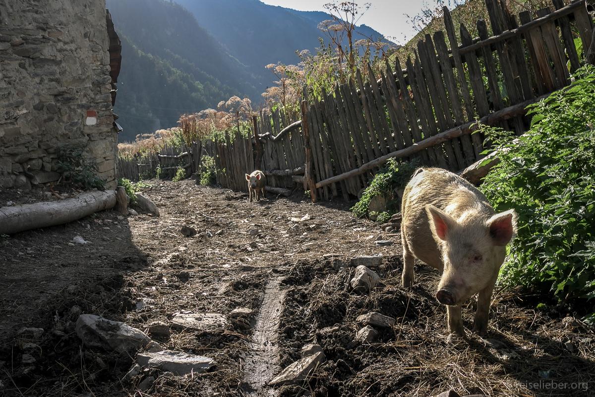 20150916_georgien-swanetien-trekking_L1171242