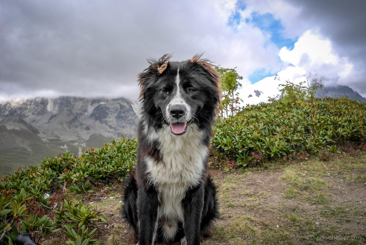 20150917_georgien-swanetien-trekking_L1171319