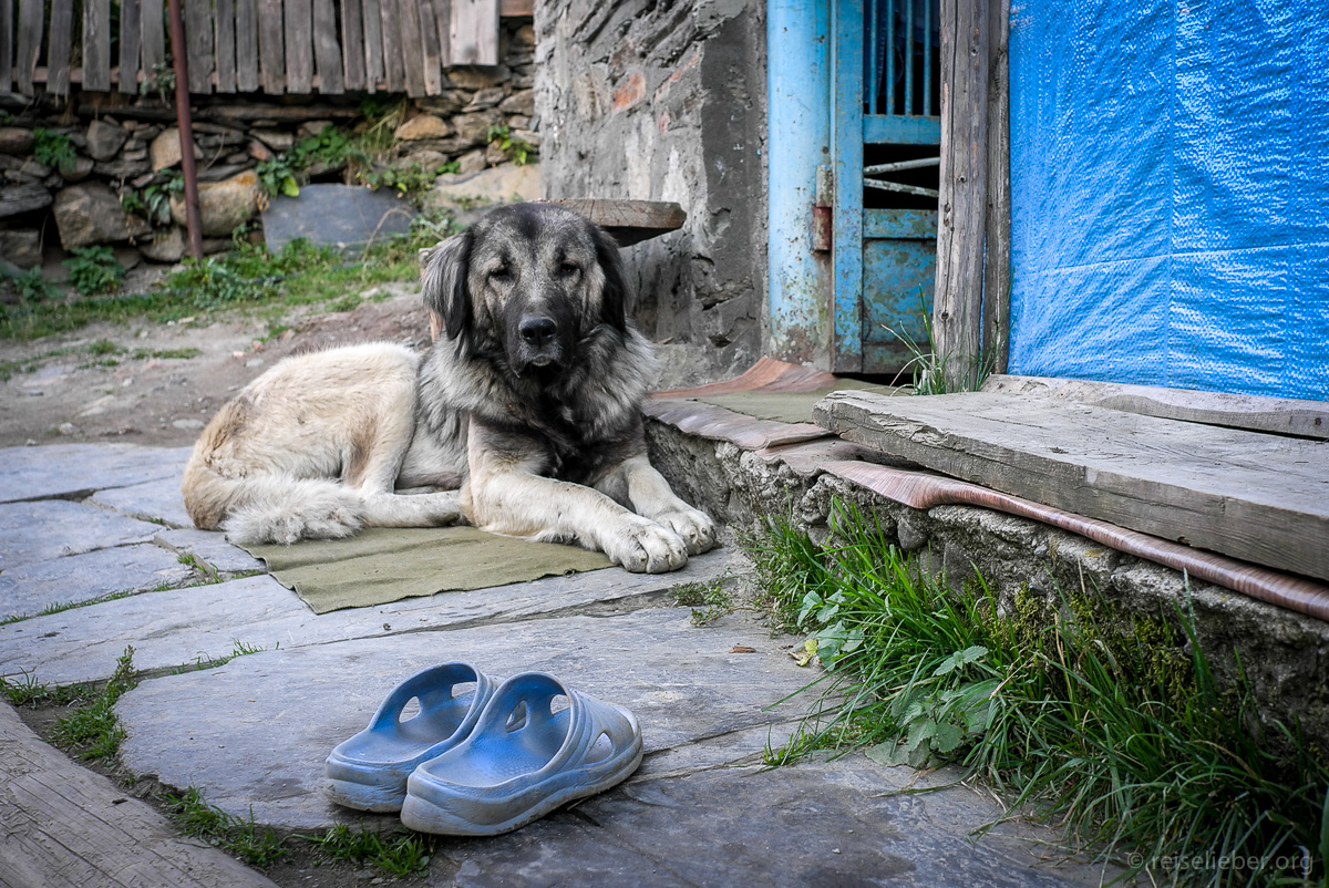 20150917_georgien-swanetien-trekking_L1171336