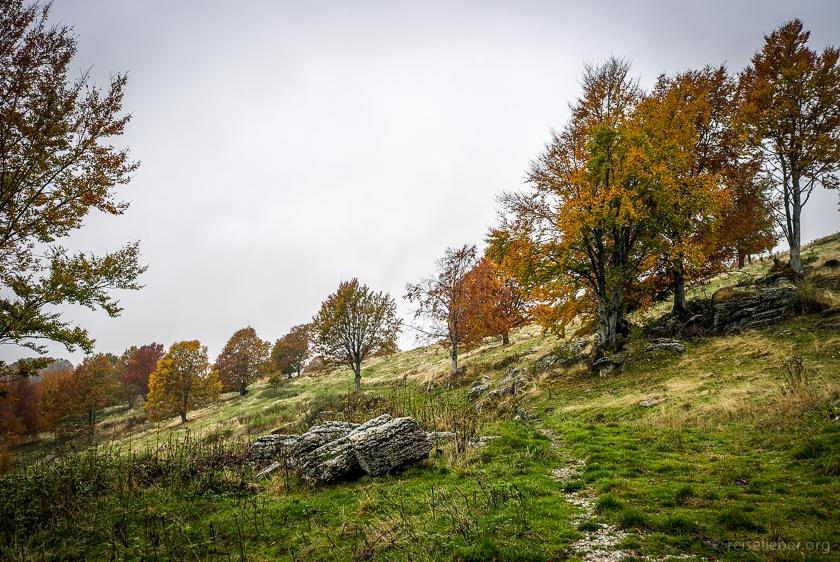 20151013-italien-e5-fernwanderweg-L1173110