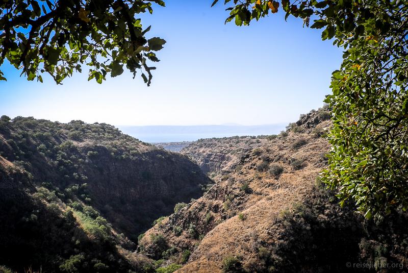 Top-Wanderung Israel: Lower Zavitan Stream zum Hexagon Pool