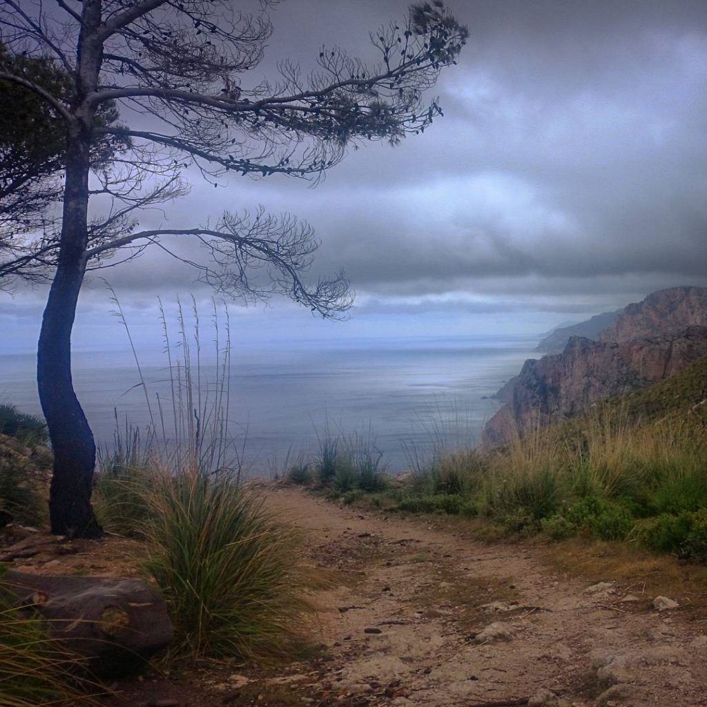 More than sun and beach hiking on Mallorca the SenderoDePiedrasSecashellip