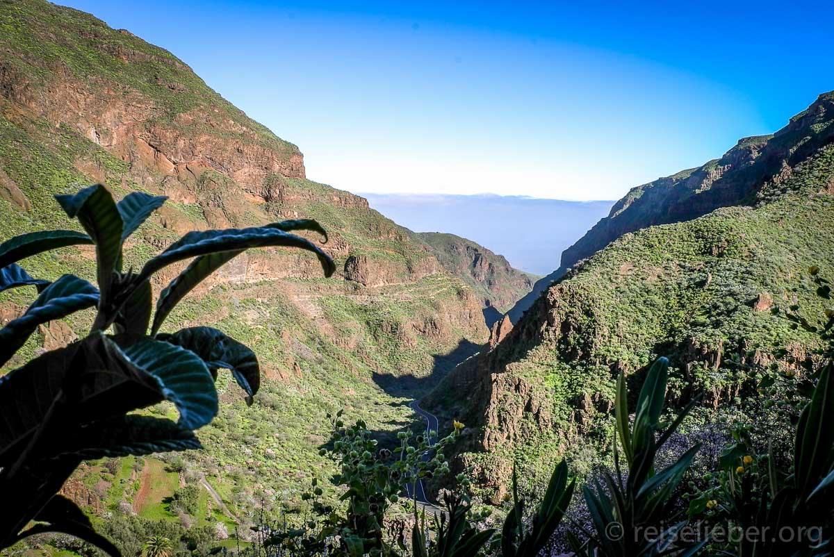 Blick ins Tal von Guayadeque