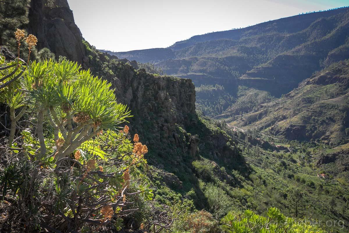 Tal bei Ayagaures, Gran Canaria