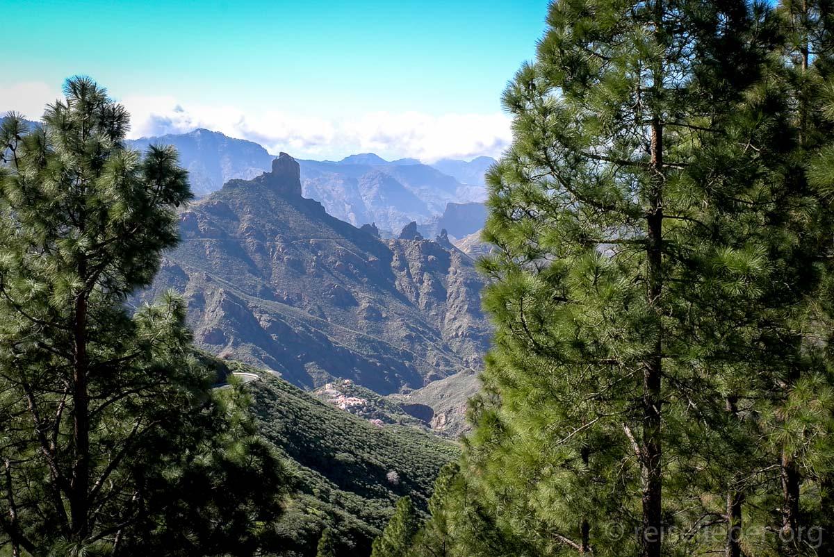 Tamabada-Wald und Roque Bentayga