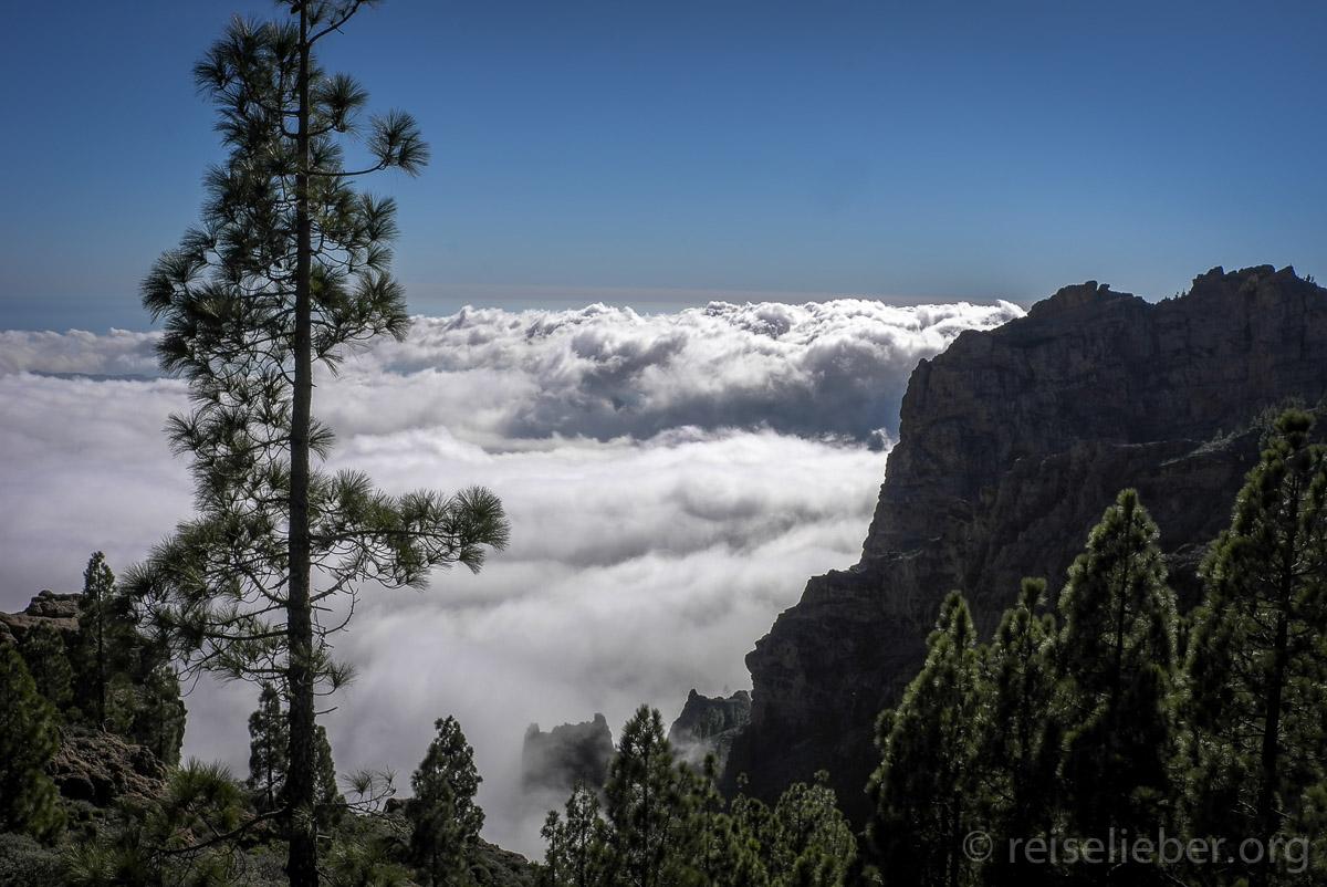 Aublick vom Pico de las Nieves