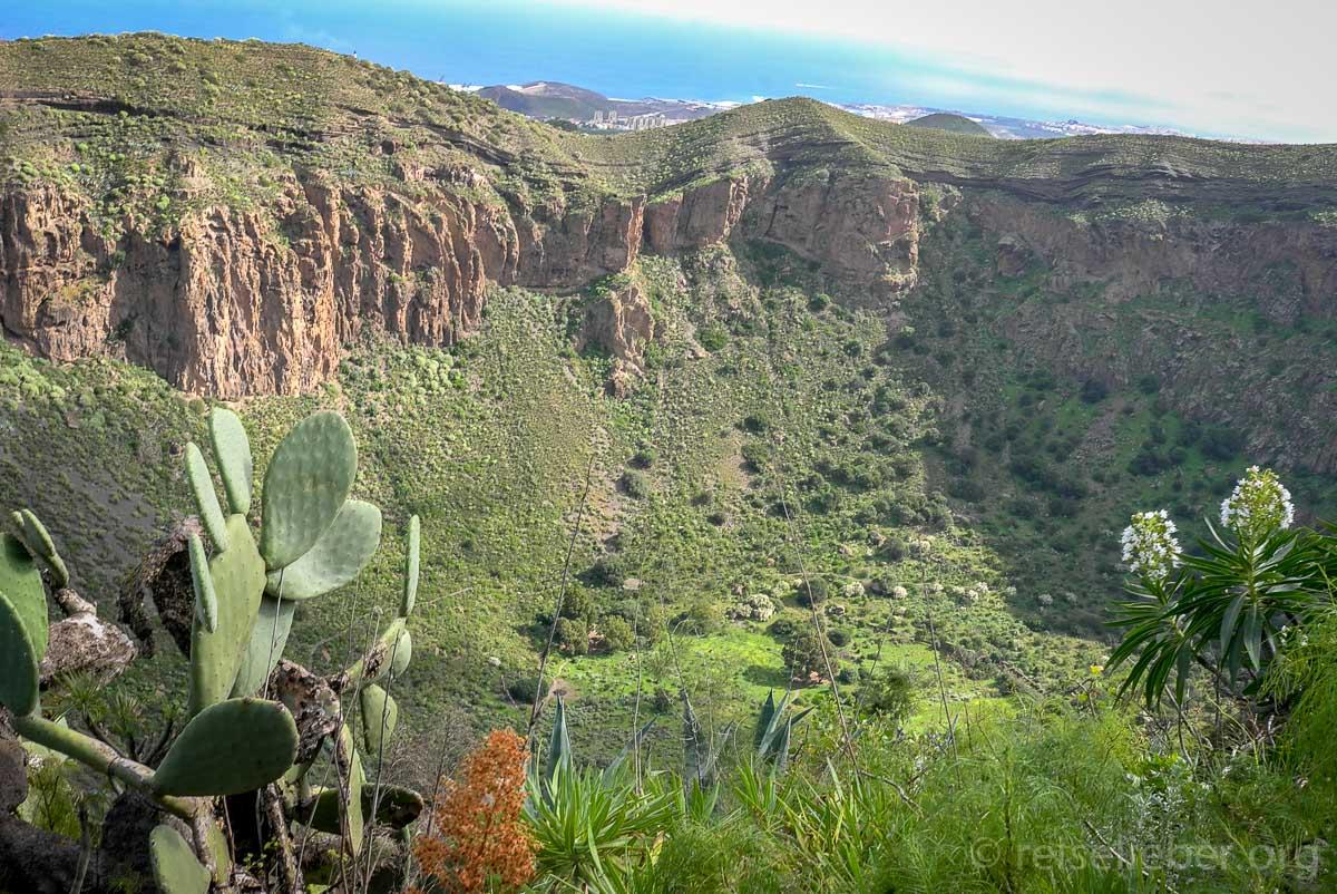 In einer Stunde kann man den Bandama Vulkankrater umrunden