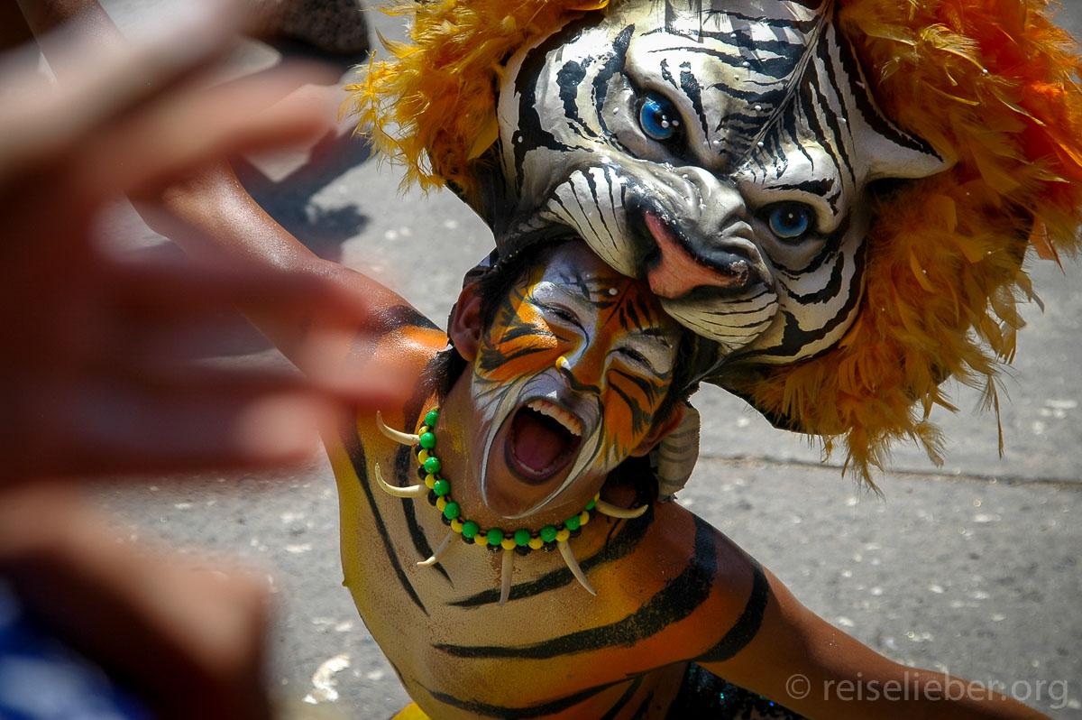 Typische Tigermaske, Carnaval de Barranquilla