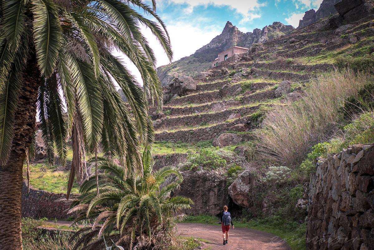 Wandern auf Teneriffa im Teno-Gebirge