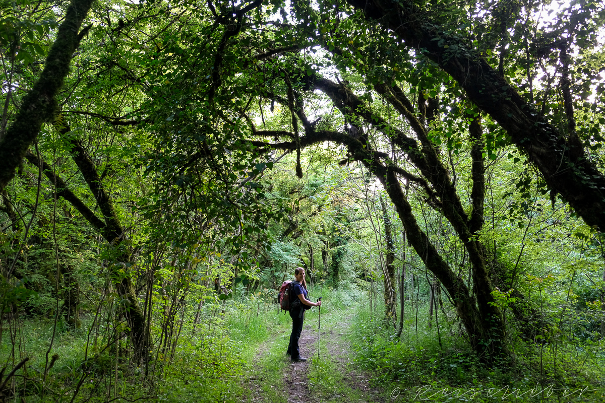 Wanderin im Lagodekhi-Nationark