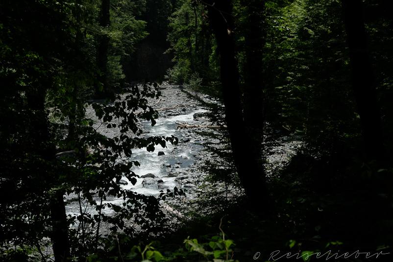 Reissender Fluss im Lagodekhi-Nationalpark