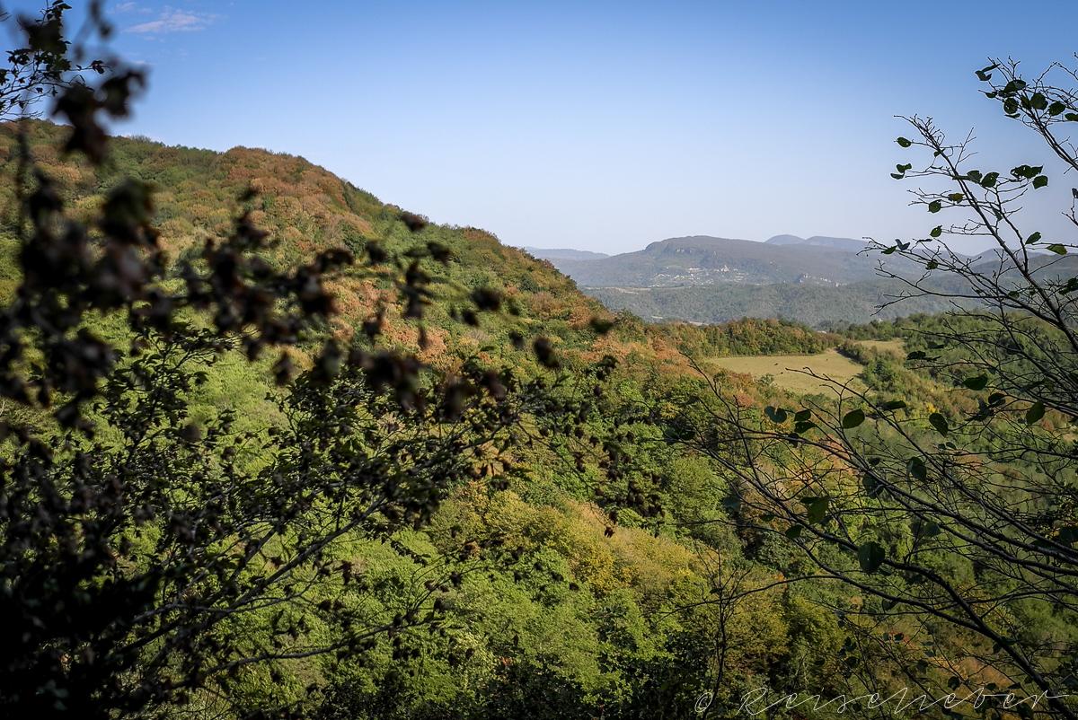 Kolchischer Wald im Sataplia Naturschutzgebiet, Ausflug von Kutaissi