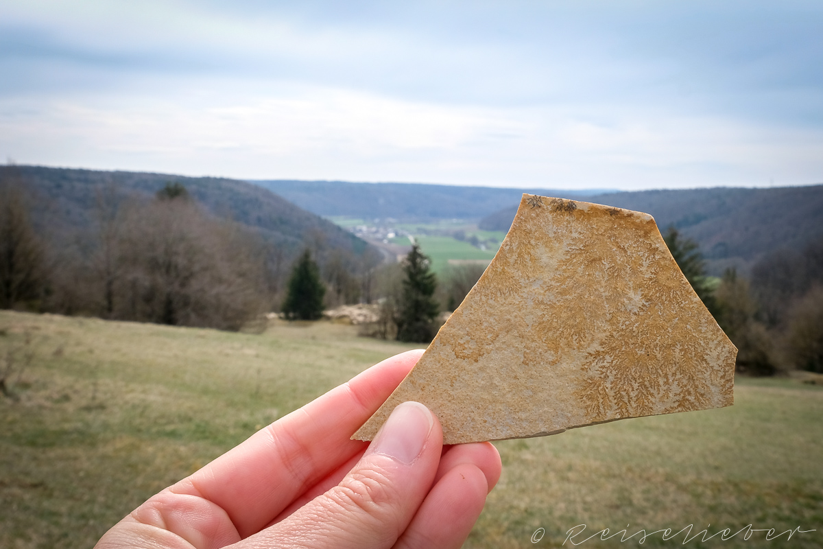 Solnhofer Plattenkalk am Rundwanderung um Schernfeld