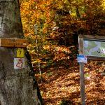Wegweiser zum Jägersteig im Urdonautal