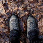 Wanderschuhe, die auf Laub stehen